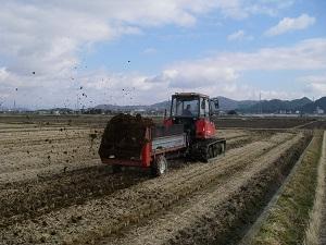 牛糞堆肥散布