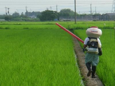 水稲肥料散布