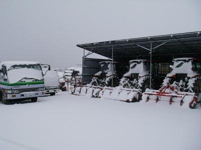 この冬初めての積雪です。