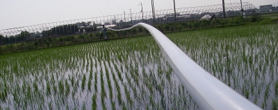 水稲用中期除草剤散布